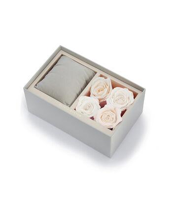 OLIVIA BURTON LONDON Everlasting Flower Box840048080 – Everlasting Flower Box - Front view