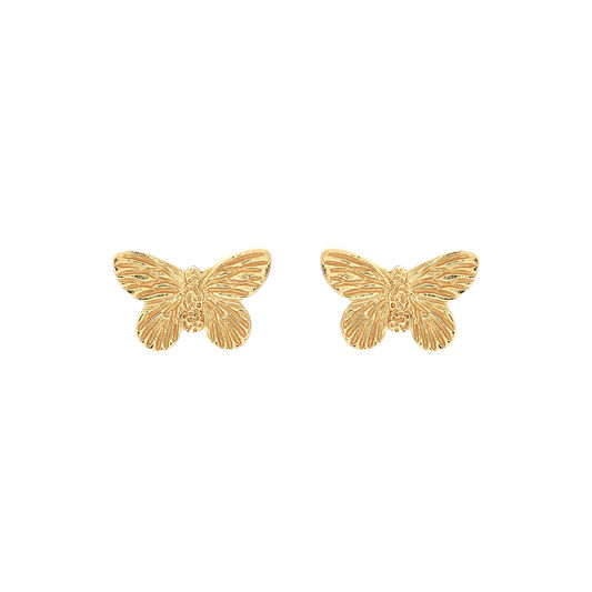3D Butterfly Stud Earrings Gold